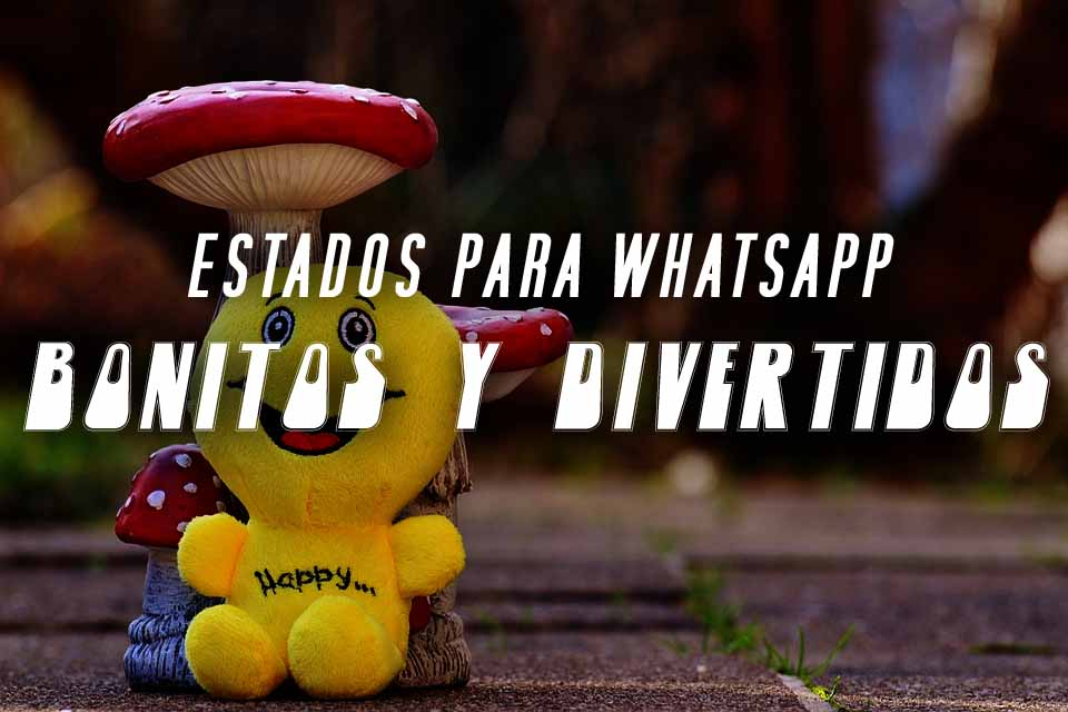 estados para whatsapp bonitos y divertidos